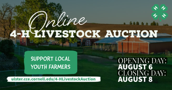 4-H Online Livestock Auction