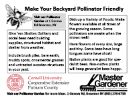 Pollinator Handout Index Cards