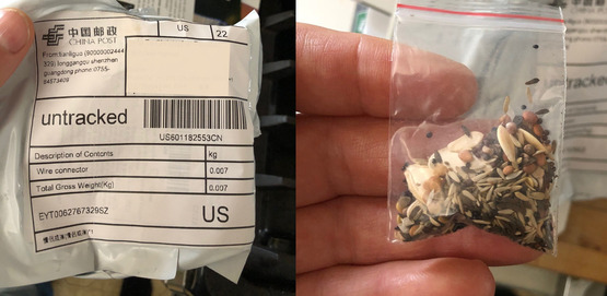 Packaging and Seeds mailed from China unsolicited and mislabeled