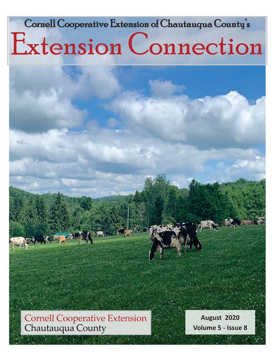 Extension Connection August 2020