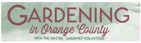 Click here for information on our Gardening in Orange County Newsletter!