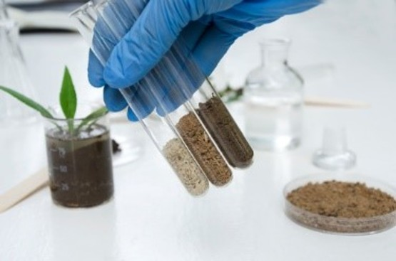 Click here for more information on our soil testing services!