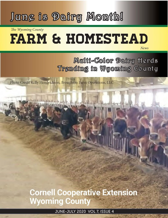 Farm and Homestead June/July 2020