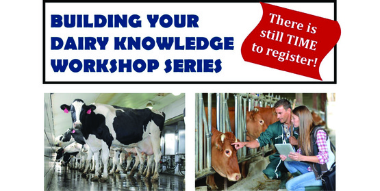 Building Your Dairy Knowledge Workshop Series