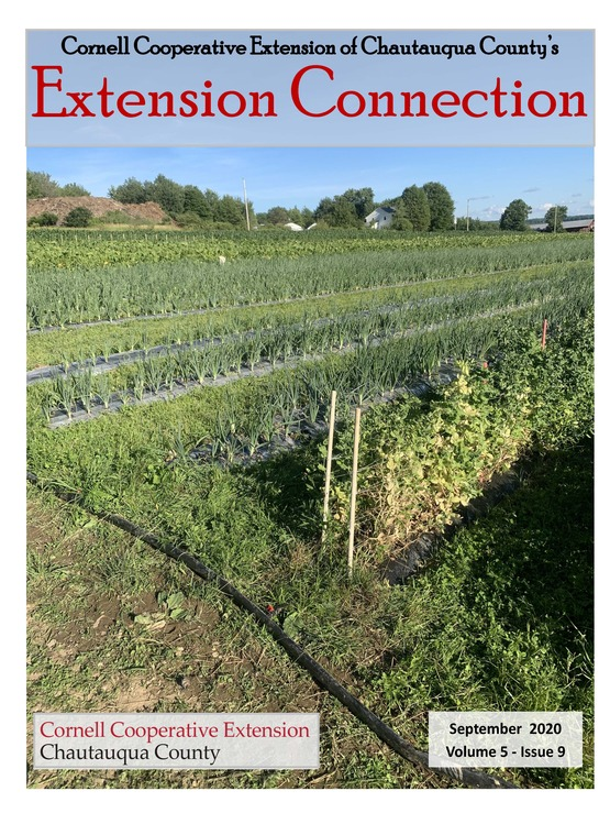 Extension Connection September 2020
