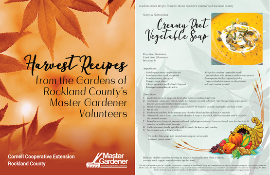 Recipe book cover and sample page