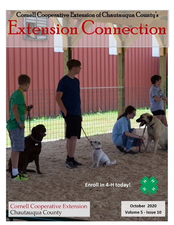 Extension Connection October 2020
