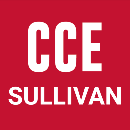 CCE SULLIVAN COUNTY