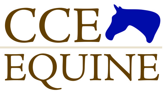 New CCE Equine