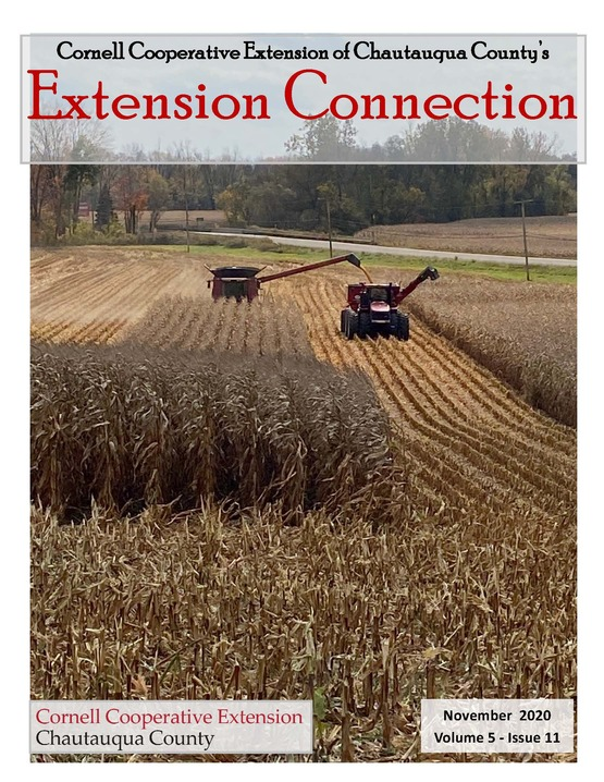 Extension Connection November 2020