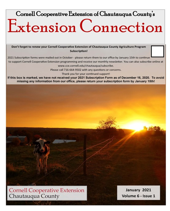 Extension Connection January 2021
