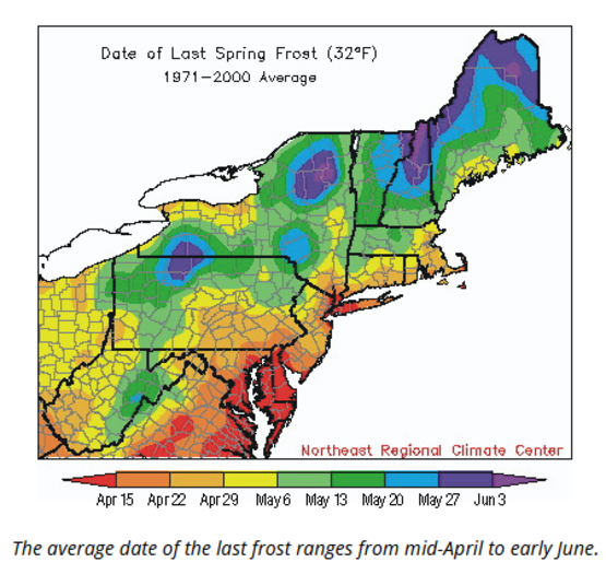 find hte last average spring frost date for your area