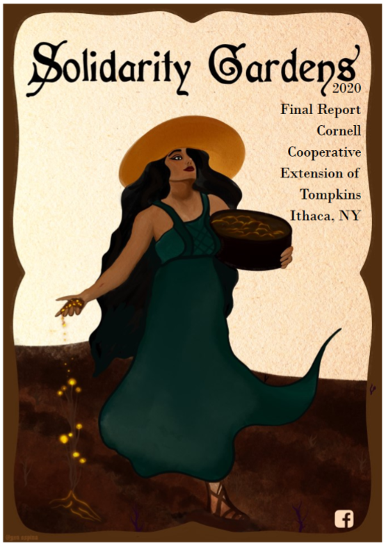Download the 2020 Final Report from Solidarity Gardens