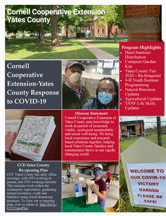 CCE-Yates County COVID-19 Response Report