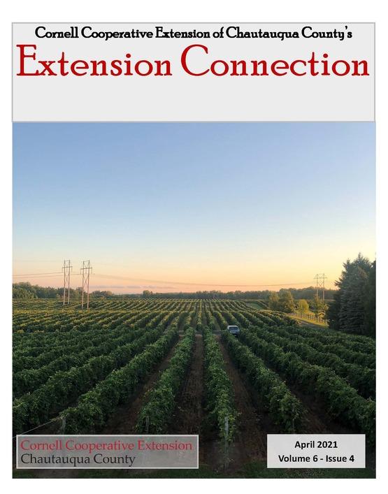 Extension Connection April 2021