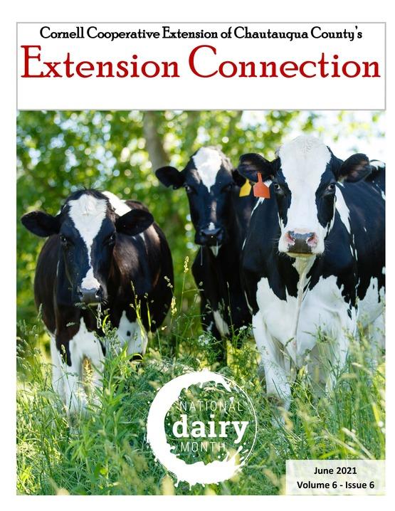 Extension Connection June 2021