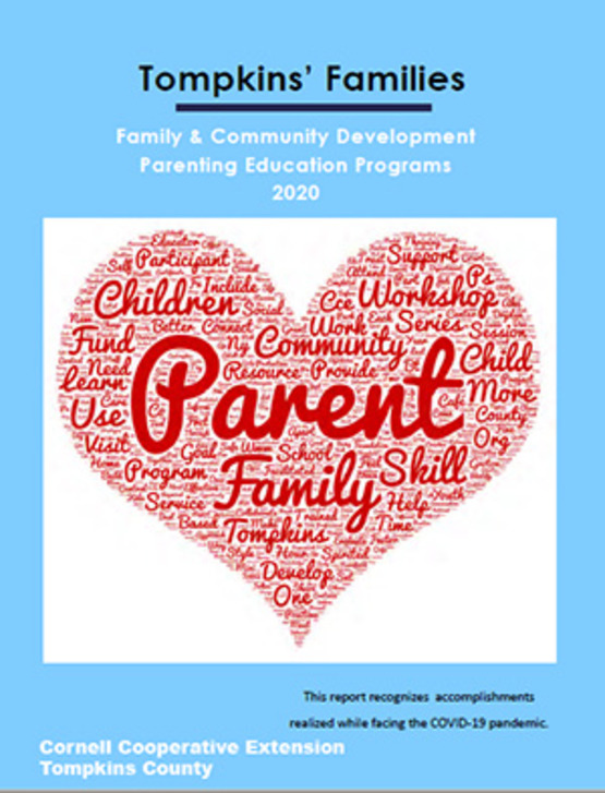 Read the 2020 report on our parenting education programs here