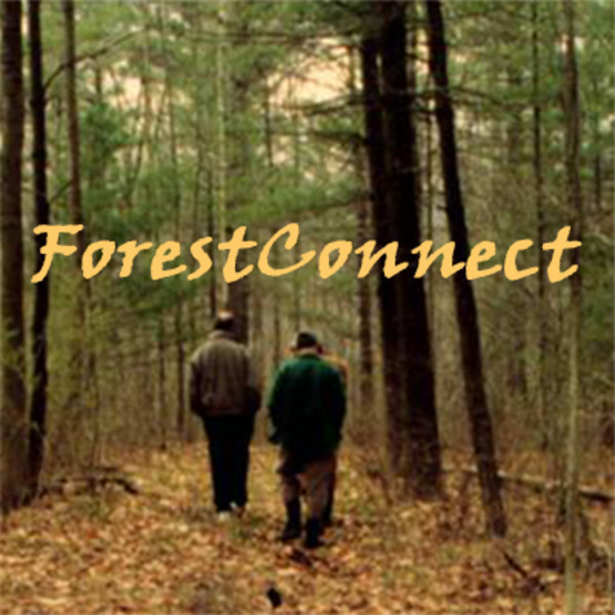Logo for CCE's Forest Connect program, 400x400px