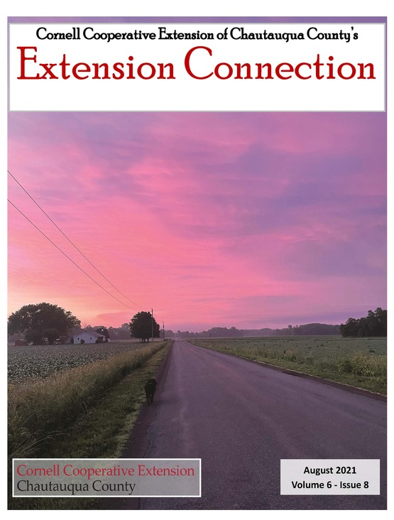 Extension Connection August 2021