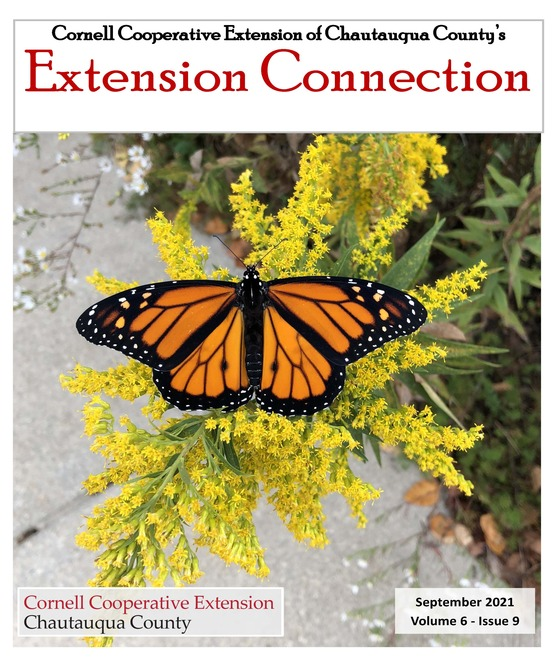 Extension Connection September 2021
