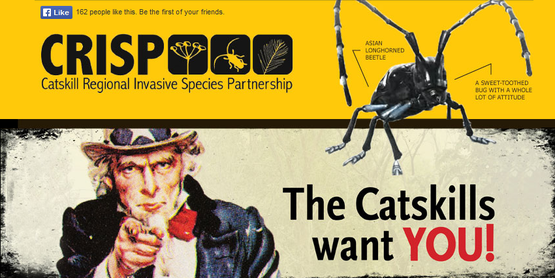 Logo for the Catskill Regional Invasive Species Partnership (850x425)