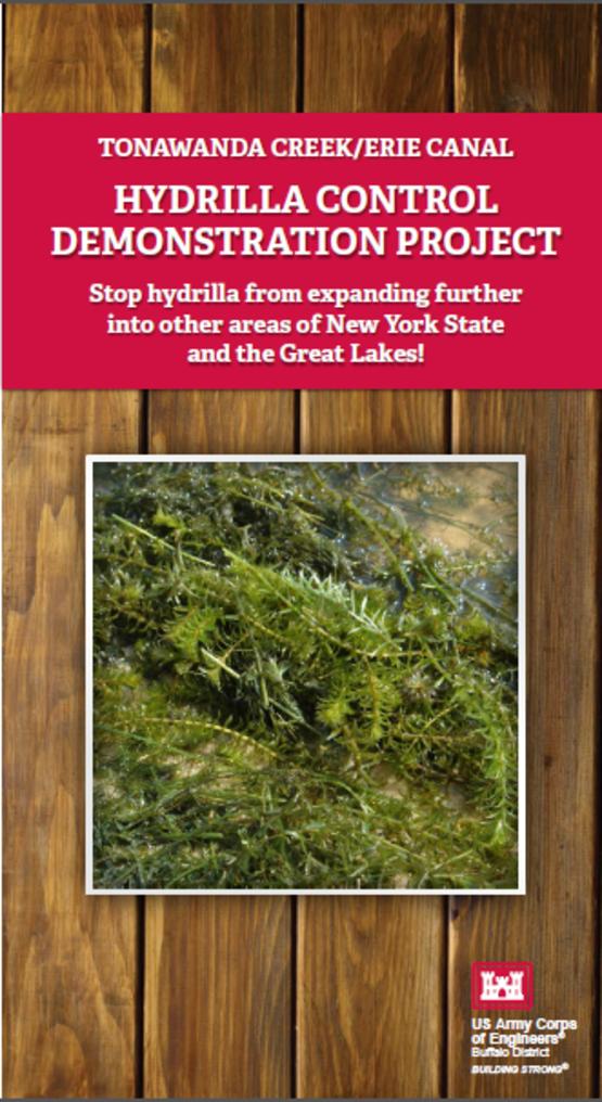 2014 hydrilla brochure cover