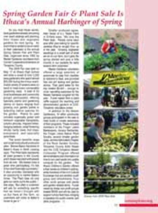 Image to accompany Plant Sale annual report article