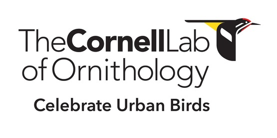 logo for the Cornell Lab of Ornithology