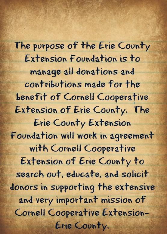 Foundation Mission