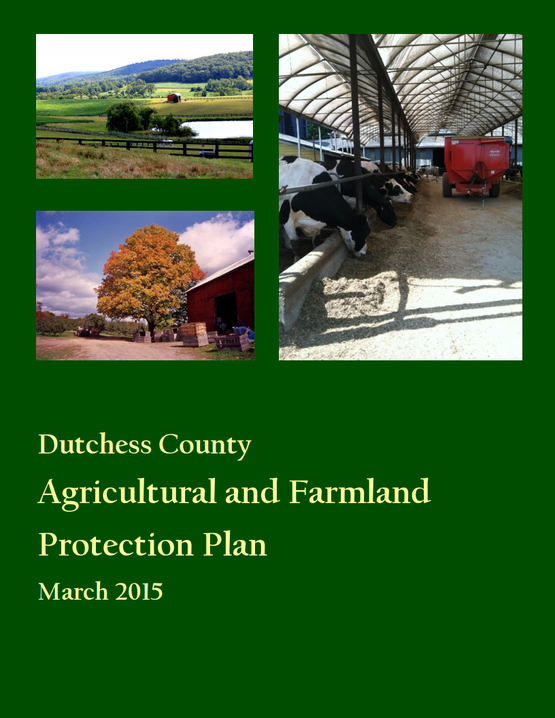 Ag&Farmland Protection Plan