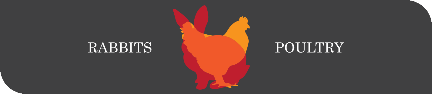 Rabbits & Poultry