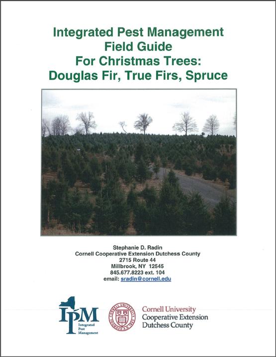 CCEDC Xmas Tree IPM