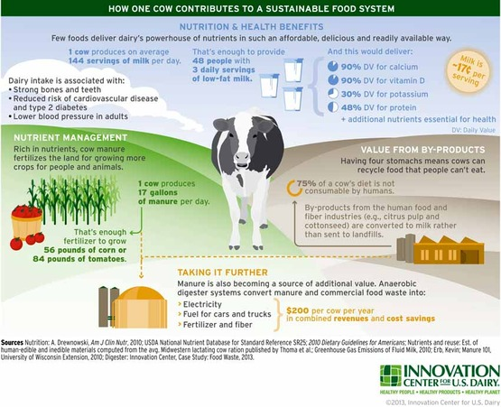 How One Cow Contributes to A Sustainable Food System