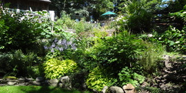 Manzano garden