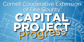 Capitol project graphic for website progress revised