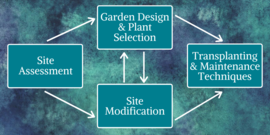 site assessment diagram