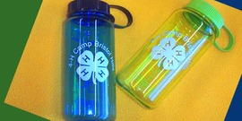 Camp Bristol Hills water bottles