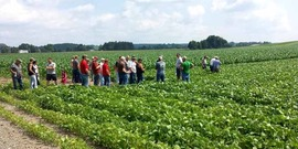 Visit to a soybean field, July 2014