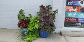 Business planters at the Kitchen Theatre are planted by Beautification volunteers each year.