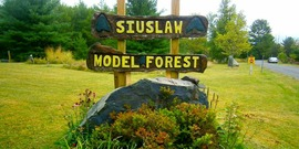 Sign for Siuslaw Model Forest