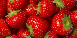 Strawberries usda 850x425