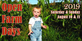 small boy in corn field with words Open Farm Days 2019, Saturday & Sunday, August 10 & 11