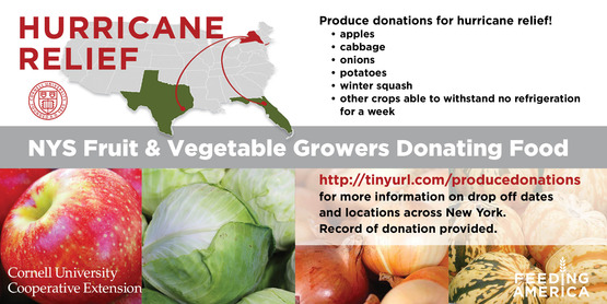 Image hurrican relief nys fruit and vegetable donations 1200x628