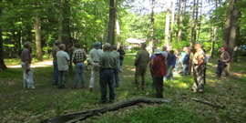 Master Forest Owners Woods Walk June 2014 Del Allen's
