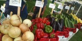 Seneca Falls  Farmers' Market