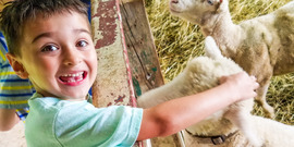 Meeting the Animals at Farm Day Camp