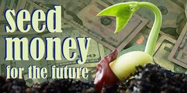 Seed money future850x425