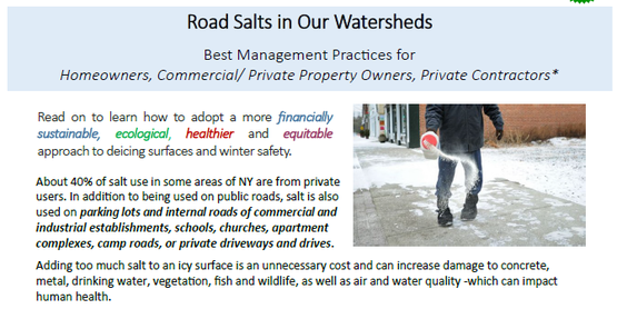 road salt handout screen shot
