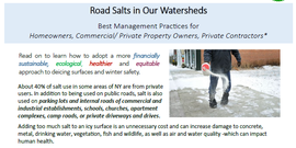 road salt handout screen shot