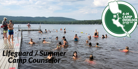 Lifeguard / Summer Camp Counselor - 4-H Camp Overlook